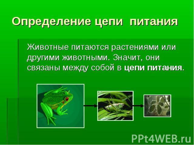 Животные питаются растениями или другими животными. Значит, они связаны между собой в цепи питания. Животные питаются растениями или другими животными. Значит, они связаны между собой в цепи питания.