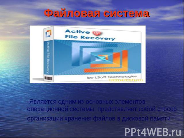 Файловая система-Является одним из основных элементов операционной системы, представляет собой способ организации хранения файлов в дисковой памяти.