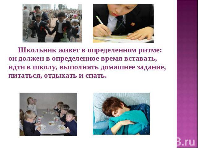 Школьник живет в определенном ритме: он должен в определенное время вставать, идти в школу, выполнять домашнее задание, питаться, отдыхать и спать. Школьник живет в определенном ритме: он должен в определенное время вставать, идти в школу, выполнять…