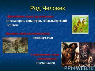 Древнейшие люди (архантропы) Древнейшие люди (архантропы) питекантроп, синантроп