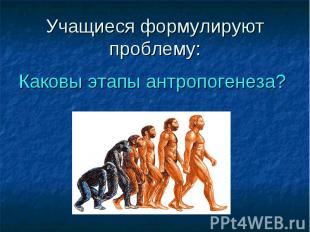 Каковы этапы антропогенеза? Каковы этапы антропогенеза?