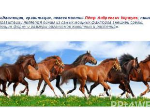 ..В книге «Эволюция, гравитация, невесомость» Пётр Андреевич Коржуев, пишет: «…с