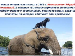 Эту мысль впервые высказал в 1882 г. Константин Эдуардович Циолковский. В статье
