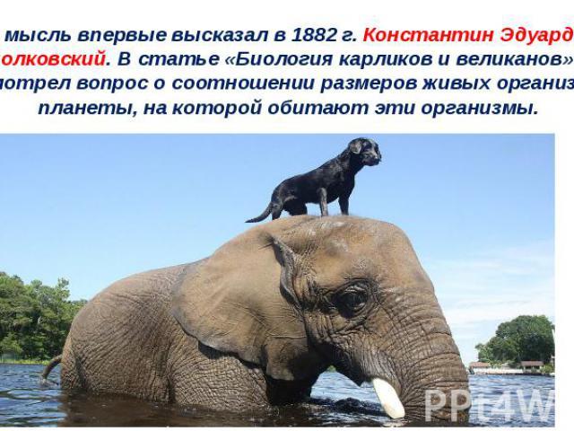Эту мысль впервые высказал в 1882 г. Константин Эдуардович Циолковский. В статье «Биология карликов и великанов» он рассмотрел вопрос о соотношении размеров живых организмов и планеты, на которой обитают эти организмы.