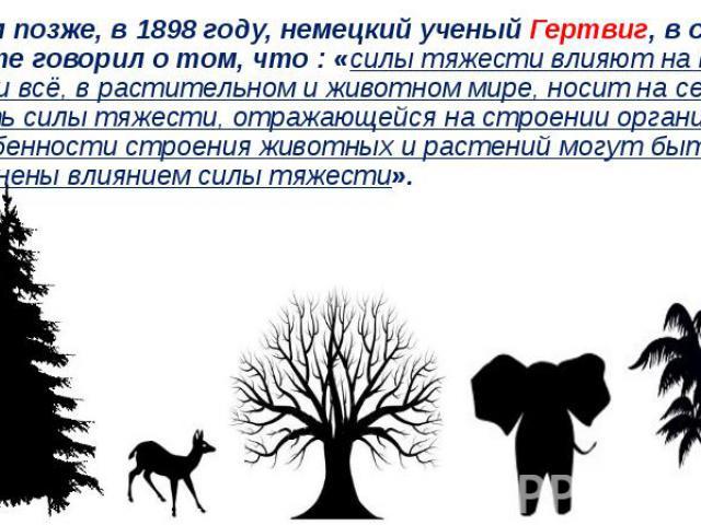 Годом позже, в 1898 году, немецкий ученый Гертвиг, в своей работе говорил о том, что : «силы тяжести влияют на все тела и всё, в растительном и животном мире, носит на себе печать силы тяжести, отражающейся на строении организма. А особенности строе…