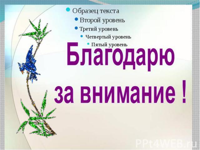 Берестовая Наталия Станиславовна воспитатель МБДОУ №26