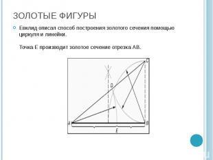 Евклид описал способ построения золотого сечения помощью циркуля и линейки. Точк