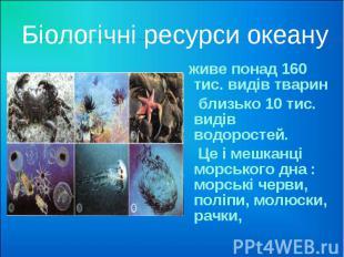 Біологічні ресурси океану живе понад 160 тис. видів тварин близько 10 тис. видів