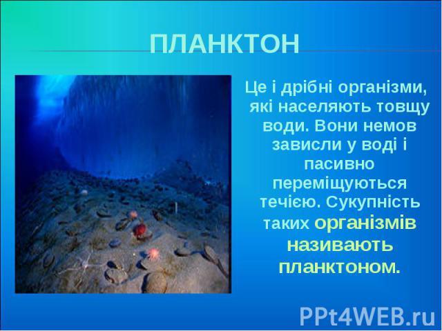 ПЛАНКТОН Це і дрібні організми, які населяють товщу води. Вони немов зависли у воді і пасивно переміщуються течією. Сукупність таких організмів називають планктоном.
