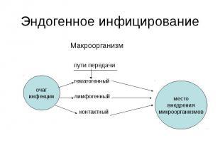 Эндогенное инфицирование Макроорганизм пути передачи гематогенный лимфогенный ко