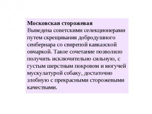 Московская сторожевая Выведена советскими селекционерами путем скрещивания добро