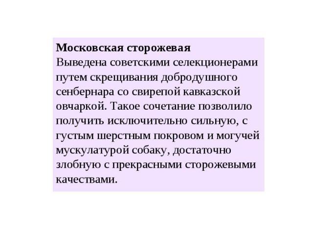 Московская сторожевая Выведена советскими селекционерами путем скрещивания добродушного сенбернара со свирепой кавказской овчаркой. Такое сочетание позволило получить исключительно сильную, с густым шерстным покровом и могучей мускулатурой собаку, д…