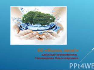 6б «Жизнь леса!» классный руководитель Сапожникова Ольга марсовна