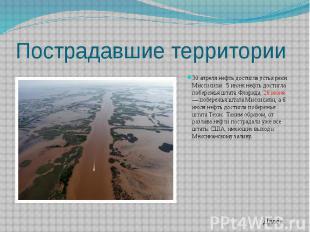 Пострадавшие территории 30 апреля нефть достигла устья реки Миссисипи. 5 июня не