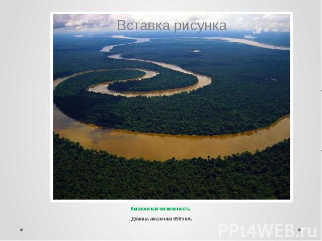 Амазонская низменность . Длинна амазонки 6565 км.