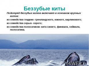 Подотряд беззубых китов включает в основном крупных китов: Подотряд беззубых кит