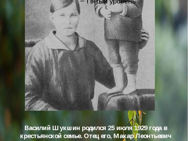 Василий Шукшин родился25 июля1929 года в крестьянской семье. Отец его, Макар Леонтьевич Шукшин был арестован и расстрелян в1933 году, реабилитирован посмертно. Мать, Мария Сергеевна (в девичестве Попова; во втором браке— Кукс…