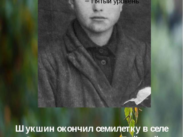 Шукшин окончил семилетку в селе Сростки и поступил в Бийский автомобильный техникум, который не закончил. Работал в колхозе, слесарем , учителем русского языка и словесности.