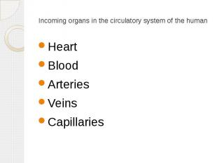 Incoming organs in the circulatory system of the human Heart Blood Arteries Vein