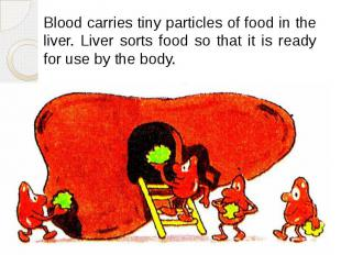 Blood carries tiny particles of food in the liver. Liver sorts food so that it i