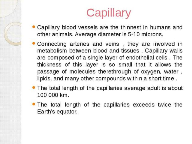 Capillary Capillary blood vessels are the thinnest in humans and other animals. Average diameter is 5-10 microns. Connecting arteries and veins , they are involved in metabolism between blood and tissues . Capillary walls are composed of a single la…