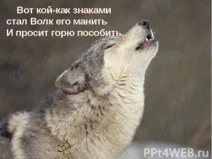 Вот кой-как знаками стал Волк его манить И просит горю пособить. Вот кой-как зна