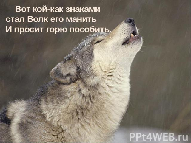 Вот кой-как знаками стал Волк его манить И просит горю пособить. Вот кой-как знаками стал Волк его манить И просит горю пособить.