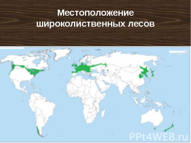 Местоположение широколиственных лесов