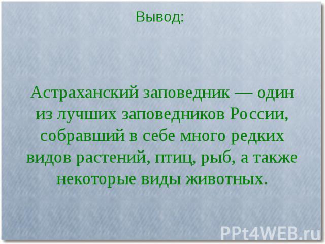 Астраханский заповедник — один из лучших заповедников России, собравший в себе много редких видов растений, птиц, рыб, а также некоторые виды животных.