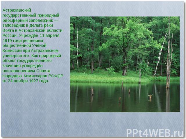 Астраханский государственный природный биосферный заповедник — заповедник в дельте реки Волга в Астраханской области России. Учреждён 11 апреля 1919 года решением общественной Учёной Комиссии при Астраханском университете. Как природный объект госуд…
