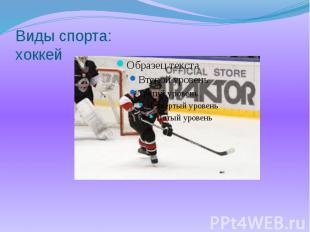 Виды спорта: хоккей