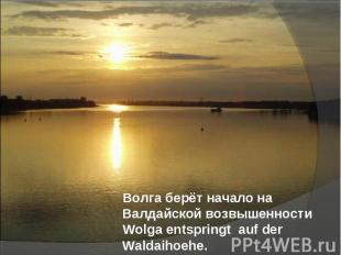 Волга берёт начало на Валдайской возвышенности Волга берёт начало на Валдайской