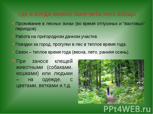 """ГДЕ И КОГДА МОЖНО ПОЛУЧИТЬ УКУС КЛЕЩА Проживание в лесных зонах (во время отпускных и """"вахтовых"""" периодов). Работа на пригородном дачном участке. Поездки за город, прогулки в лес в теплое время года. Сезон – теплое время года (весна, лето,…"""