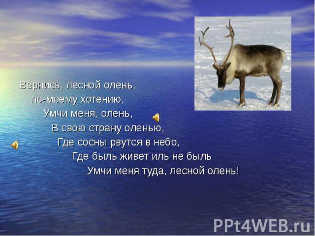 Вернись, лесной олень, по-моему хотению, Умчи меня, олень, В свою страну оленью, Где сосны рвутся в небо, Где быль живет иль не быль Умчи меня туда, лесной олень!
