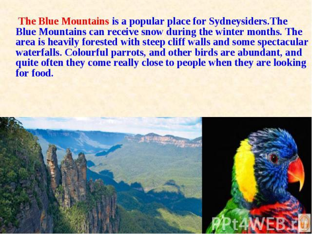 The Blue Mountains is a popular place for Sydneysiders.The Blue Mountains can receive snow during the winter months. The area is heavily forested with steep cliff walls and some spectacular waterfalls. Colourful parrots, and other birds are abundant…