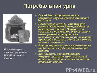 Погребальная урна Сосуд для захоронения праха умершего служил местом обитания ег