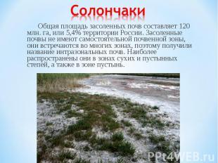 Общая площадь засоленных почв составляет 120 млн. га, или 5,4% территории России