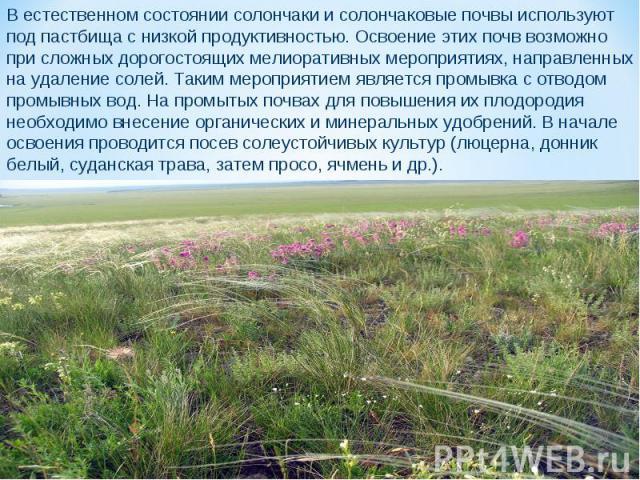 В естественном состоянии солончаки и солончаковые почвы используют под пастбища с низкой продуктивностью. Освоение этих почв возможно при сложных дорогостоящих мелиоративных мероприятиях, направленных на удаление солей. Таким мероприятием является п…