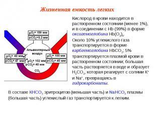 Кислород в крови находится в растворенном состоянии (менее 1%), и в соединении с