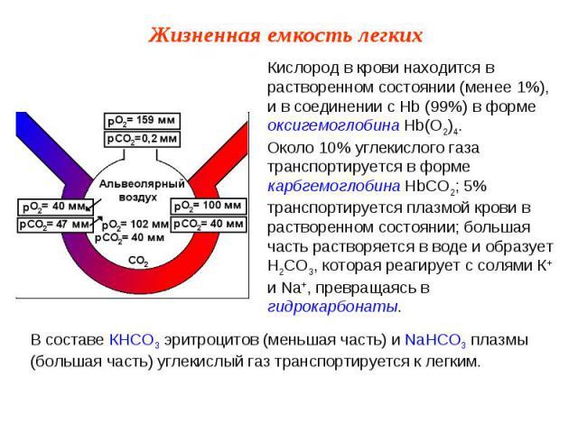 Кислород в крови находится в растворенном состоянии (менее 1%), и в соединении с Hb (99%) в форме оксигемоглобина Hb(О2)4.Около 10% углекислого газа транспортируется в форме карбгемоглобина НbСО2; 5% транспортируется плазмой крови в растворенном сос…