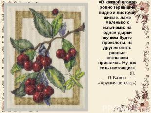 Картины Людмилы Александровны очень красивые. «В каждой ягодке ровно зернышки ви