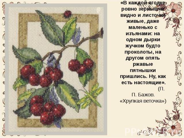 Картины Людмилы Александровны очень красивые. «В каждой ягодке ровно зернышки видно и листочки живые, даже маленько с изъянами: на одном дырки жучком будто проколоты, на другом опять ржавые пятнышки пришлись. Ну, как есть настоящие,» - написал П.П. …