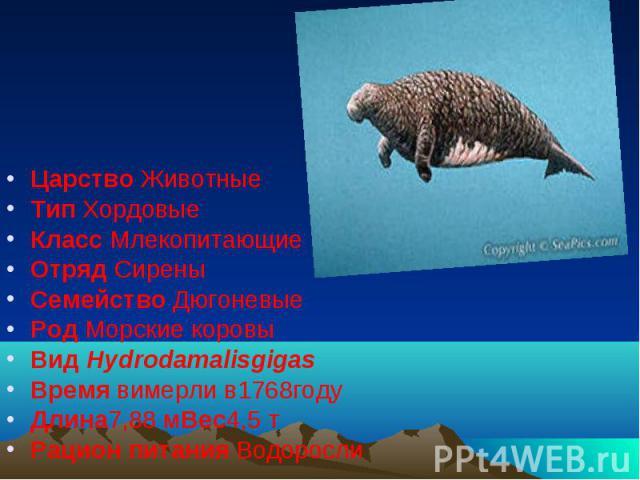 Царство Животные Тип Хордовые Класс Млекопитающие Отряд Сирены Семейство Дюгоневые Род Морские коровы Вид Hydrodamalisgigas Время вимерли в1768году Длина7,88 мВес4,5 т Рацион питания Водоросли