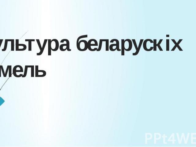 Культура беларускіх зямель