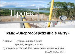 Тема: «Энергосбережение в быту» Авторы: Петрова Полина, 8 класс Уронов Дмитрий,