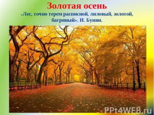Золотая осень «Лес, точно терем расписной, лиловый, золотой, багряный». И. Бунин