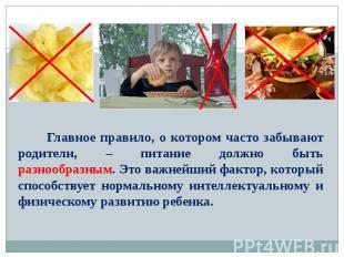 Главное правило, о котором часто забывают родители, – питание должно быть разноо