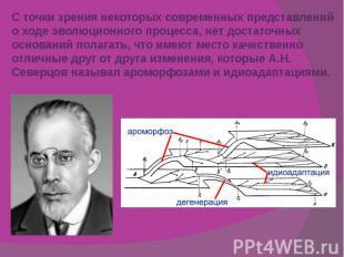 С точки зрения некоторых современных представлений о ходе эволюционного процесса