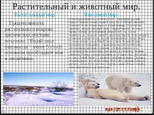 Растительный и животный мир. Продуктивность растительного покрова арктических пу