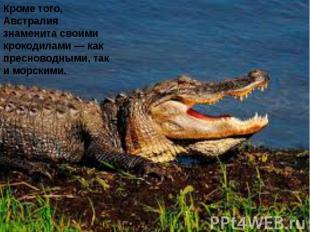 Кроме того, Австралия знаменита своими крокодилами — как пресноводными, так и мо